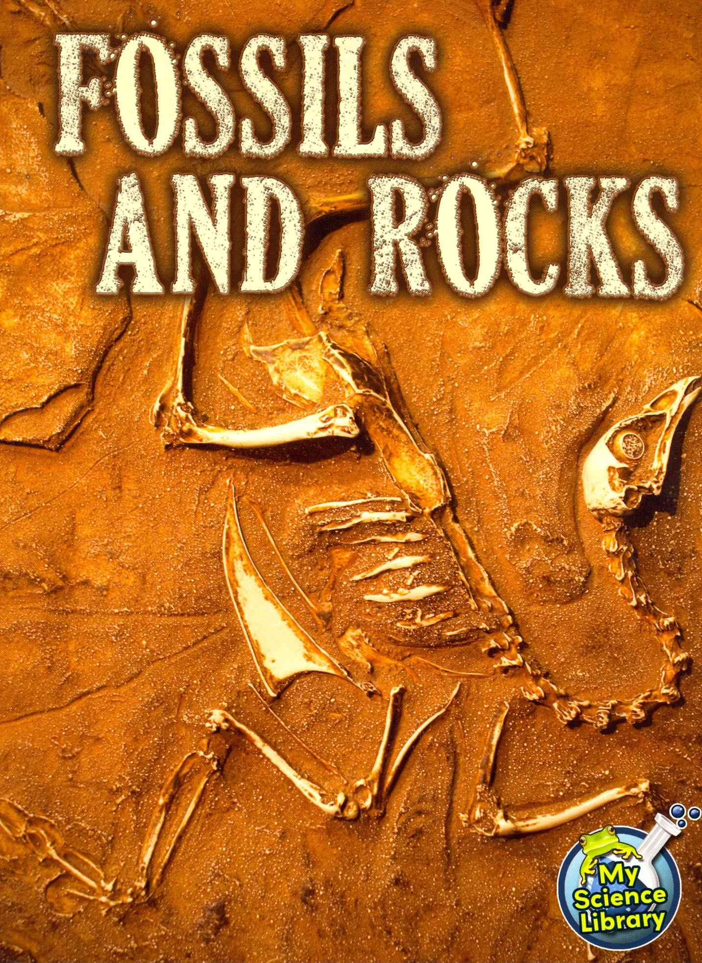 Fossils and Rocks By Hutmacher, Kimberly